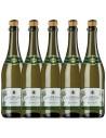 Pachet 5 sticle Vin alb, Lambrusco, Sant'Orsola Emilia-Romagna, 0.75L, 8% alc., Italia