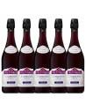 Pachet 5 sticle Vin frizzante sec Lambrusco, Villa Veroni Emilia, 0.75L, 10% alc., Italia